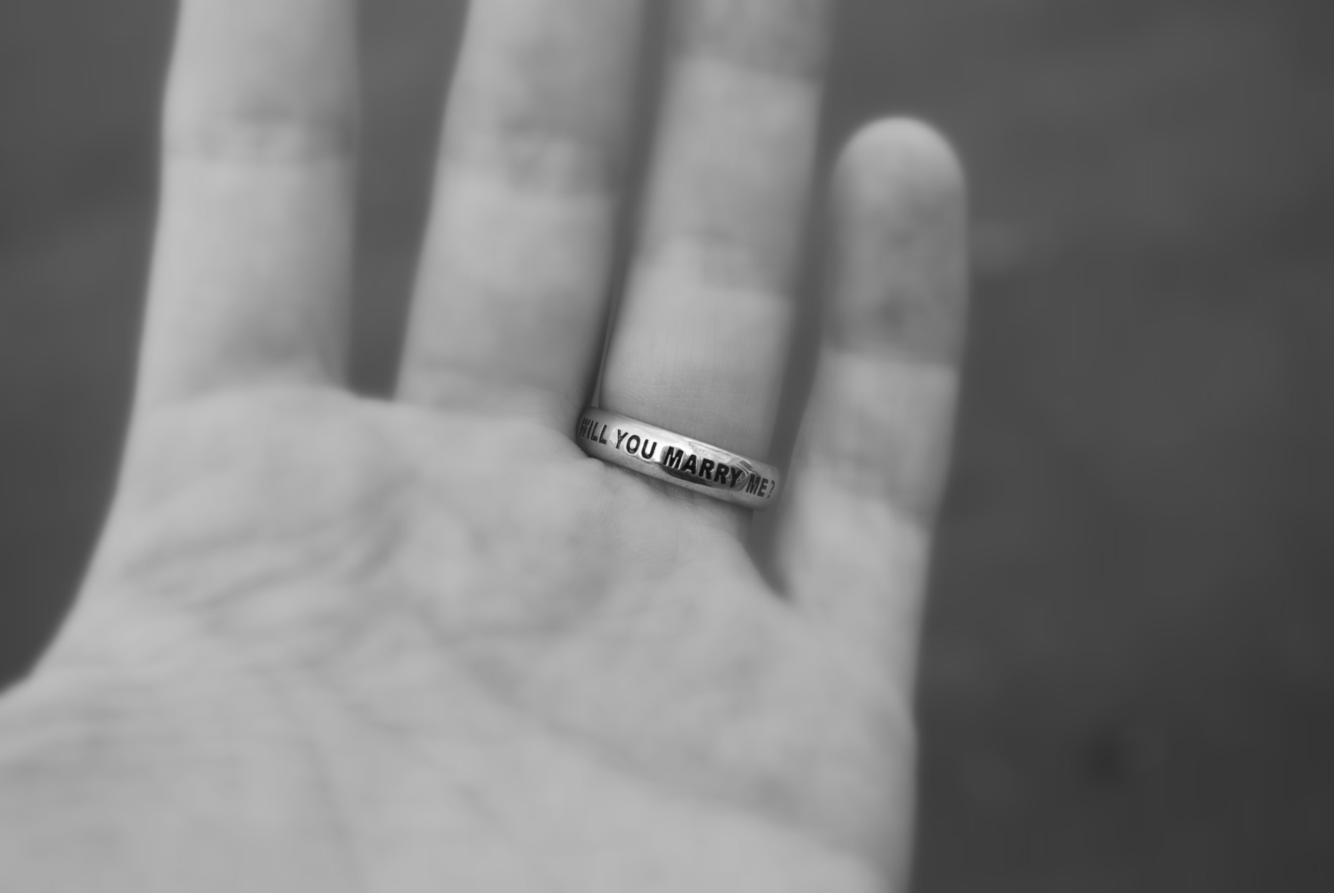 How I Proposed to Dayna with a Wilshi Ring