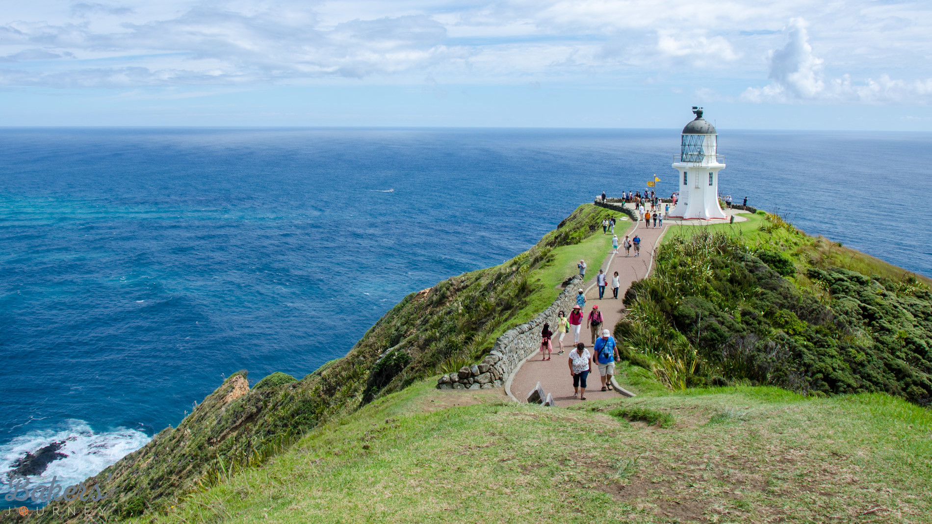 Cape Reinga Tour – Where Two Oceans Meet