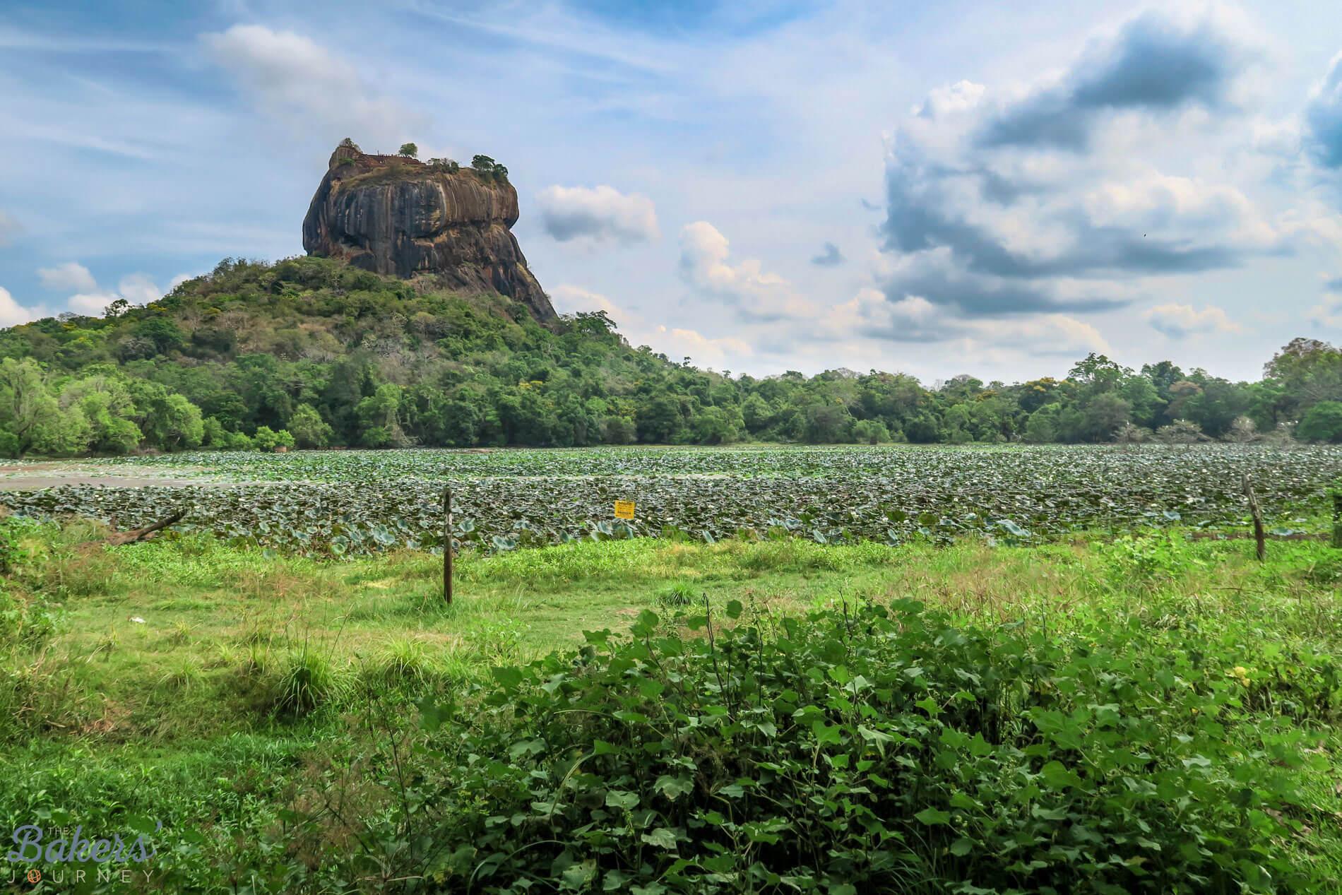 Visiting Sigiriya in Dambulla